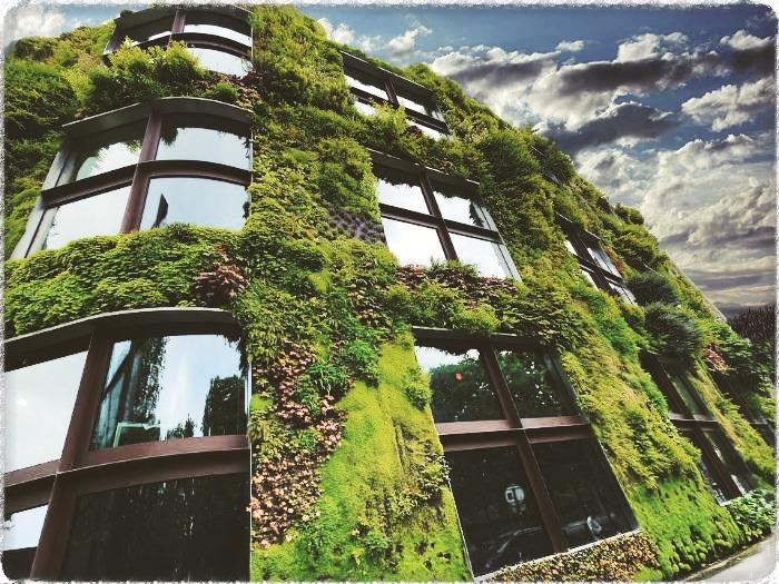 BLOG-fachada-vegetal-700[1]