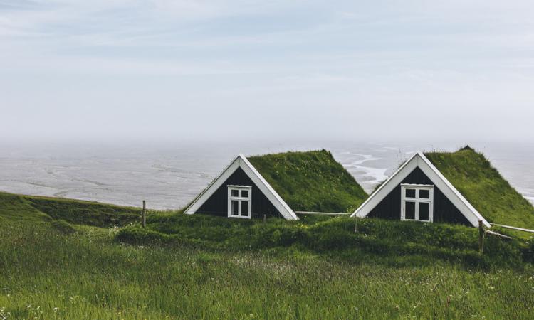Ventajas de los techos verdes