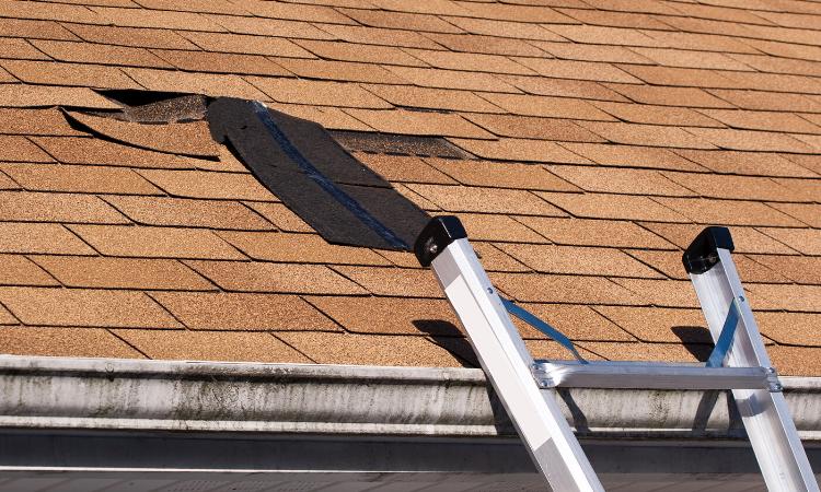 Parchear el tejado